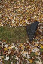 raking fall leaves