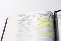 highlighted pages of a Bible