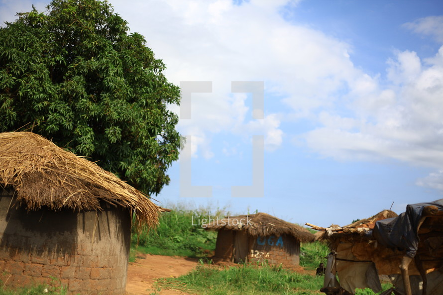 African grass roof huts