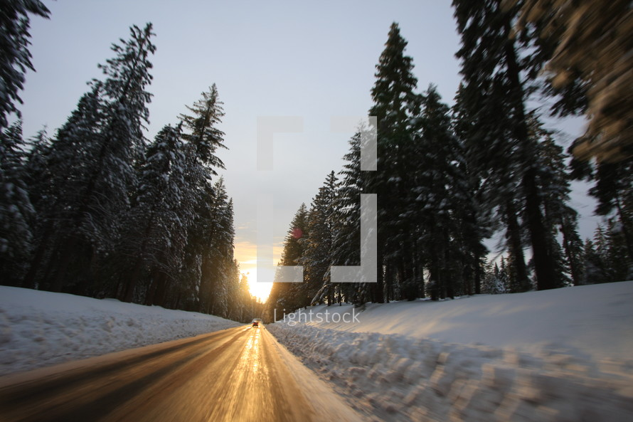 Icy road through forest
