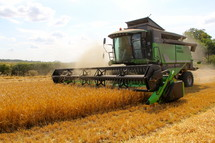 harvesting wheat on a farm