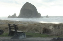 A bench beside the ocean.