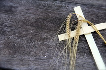 Stalks of wheat and Palm Sunday Cross on an old wooden bench
