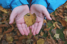 kid holding a fall leaf