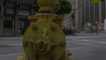 fire hydrant in a city