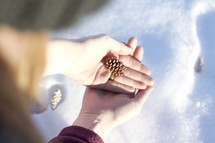 cupped hands holding a tiny pine cone over snow