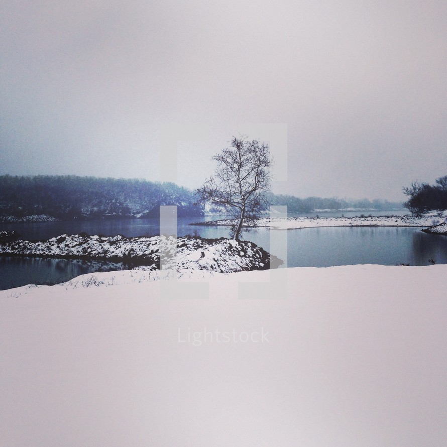 Snow-covered solitary tree on peninsula in lake.