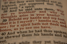 Behold my hands and my feet that it is I myself: handle me, and see; for a spirit hath not flesh and bones, as ye see me have.