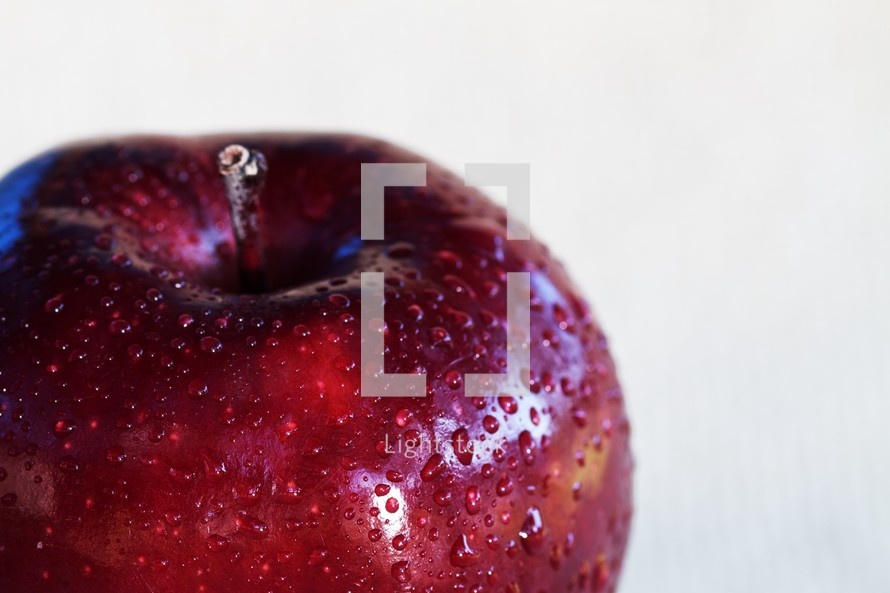 A red apple with waterdrops isolated on white