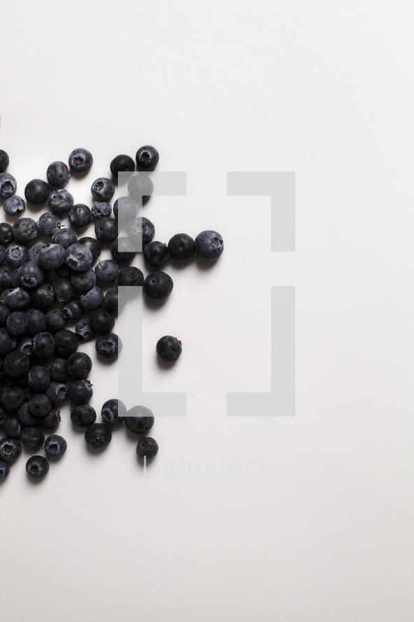 Blueberries scattered on white