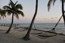 hammocks and palm trees on a beach