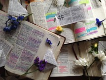 notes and flowers on the pages of a Bible