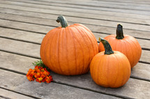 orange pumpkins on a deck