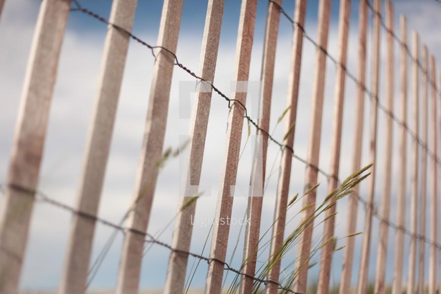 fence at the coast