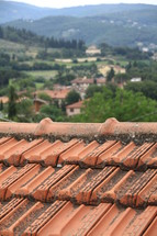 looking out over a tile roof at an Italian village