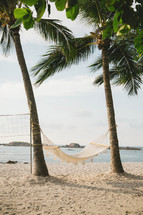 a hammock on a beach between palm trees