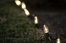 strand of Christmas lights in the grass