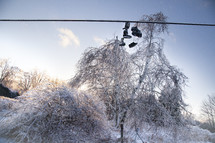 Frozen Shoes on a line are covered in ice from an ice storm above trees