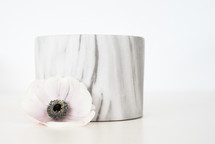 white flower and marble bowl
