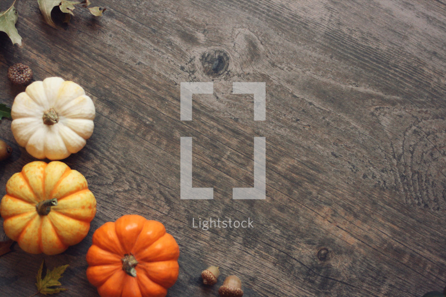 Autumn Thanksgiving Season Holiday Background with Pumpkins Over Wood