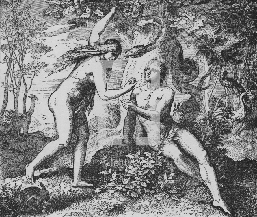 Adam and Eve with the apple, Genesis 3: 6