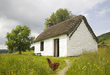 chicken in front of a country cottage