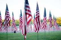 Patriotic Valor Flags