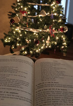 Christmas scripture in an open Bible in front of a Christmas tree