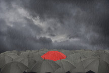 A red Umbrella surrounded by a collection of black umbrellas in the rain