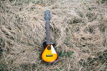 guitar lying in dead grass