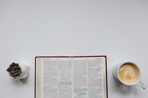 an open Bible, mug, and succulent plant