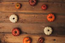 circle of small pumpkins