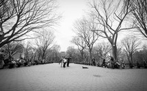 street musicians in a central park
