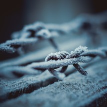 frost on barbed wire