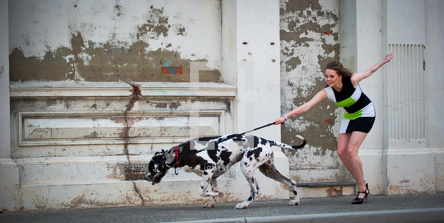 Woman being pulled by Dalmatian dog