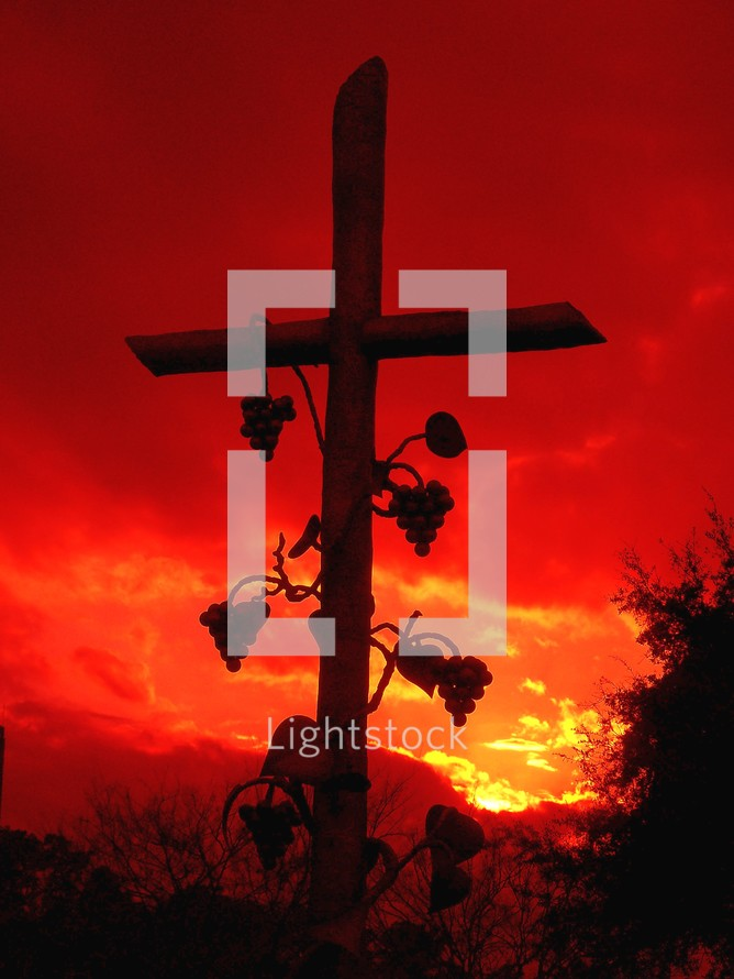 A sculpture image of the Cross shaped like a vine or branch surrounded by branches and clusters of grapes against a red sky and sunset.