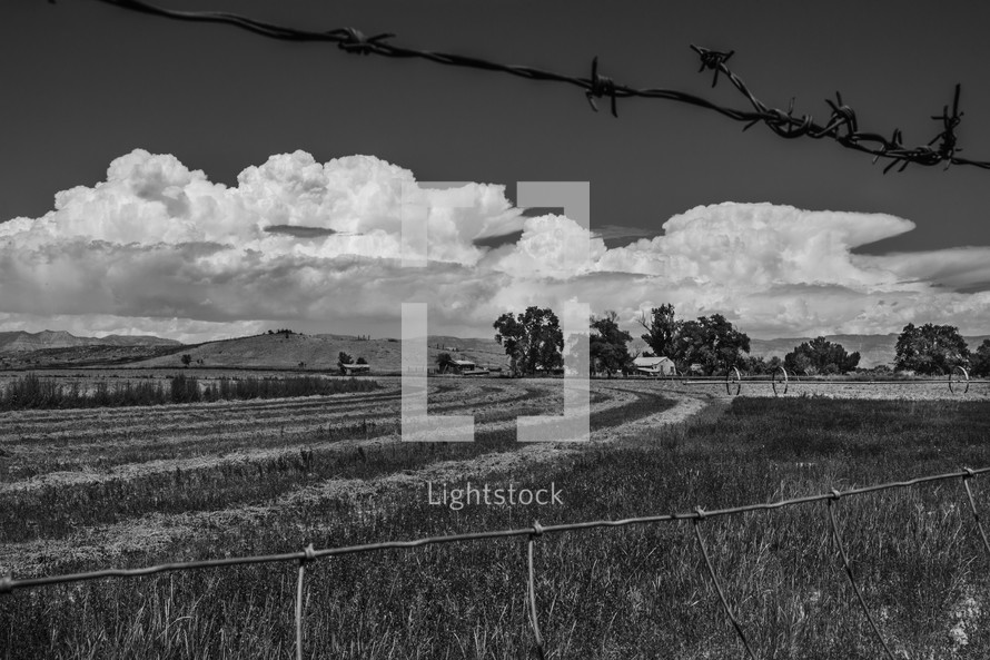 barbed wire and field on a Farm, Wellington, UT