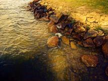 Water Rolling in Toward a Rocky Shore
