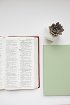 journal, open Bible, and succulent plant
