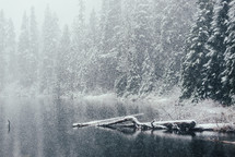 falling snow and a lake
