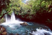 Springs of Banias, Foot of Mt Hermon, Source of the River Jordan