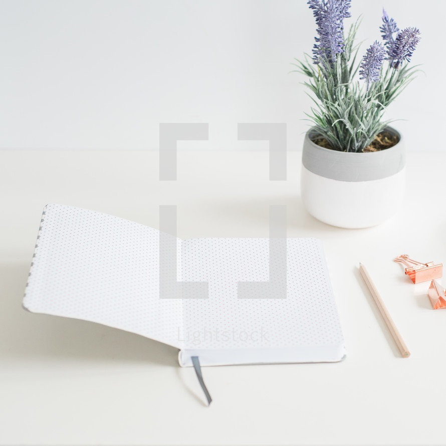 open pages of a journal, potted lavender plant, pencil, and clips on a desk