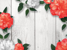 coral and white flowers on a wood background