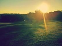 Sun setting through the trees.