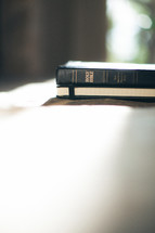 Holy Bible and Journal