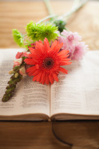Flowers on Bible pages open to Proverbs 31.