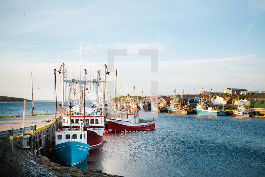 Shrimp boats docked in a cove.