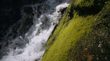 waterfall and mossy rock