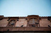 pigeons on the side of a building in Bikaner, India