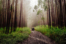 jeep traveling down a gravel dirt road through a forest